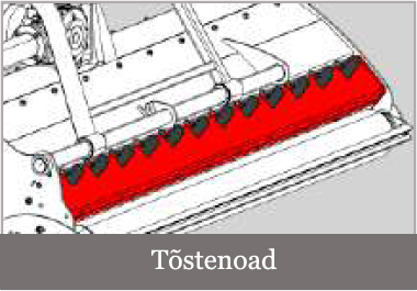 Tostenoad